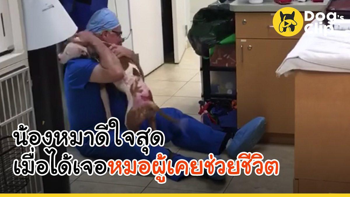 น้องหมาไม่ลืมบุญคุณ ดีใจสุดๆเมื่อได้กลับมาพบคุณหมอที่ช่วยชีวิต | Dog's Clip