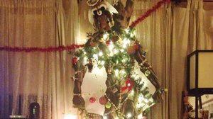รีทวีตกันรัว ๆ ภาพ กรูท ถูกประดับประดาด้วยสายรุ้งและไฟ กลายเป็นต้นคริสต์มาส