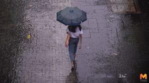 อุตุฯ เผยภาคตะวันออก ภาคใต้ ฝนยังตกต่อเนื่อง – กทม. ฝนตก 40%