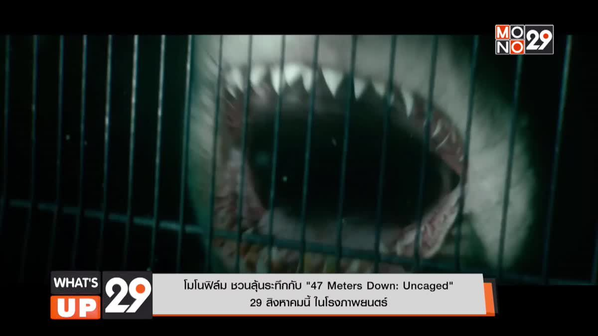 """โมโนฟิล์ม ชวนลุ้นระทึกกับ """"47 Meters Down: Uncaged"""" 29 สิงหาคมนี้ ในโรงภาพยนตร์"""