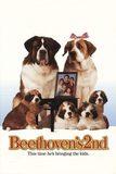 Beethoven's 2nd บีโธเฟน ชื่อหมา แต่ไม่ใช่หมา 2