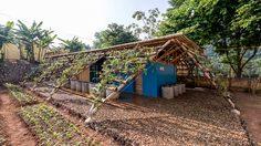 ห้องน้ำโลว์คอสต์ กับ สวนแนวตั้ง โครงการนำร่อง แก้ปัญหาขาดแคลนน้ำ ในเวียดนาม