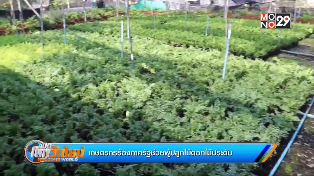 เกษตรกรร้องภาครัฐช่วยผู้ปลูกไม้ดอกไม้ประดับ