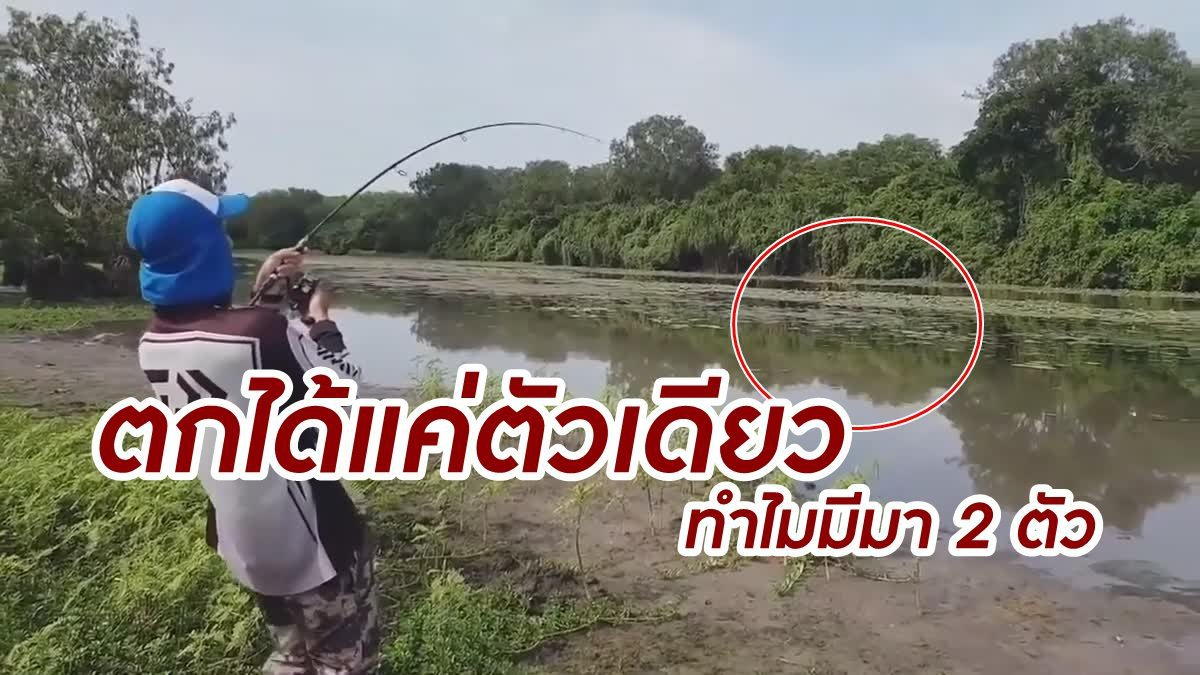 โคตรระทึก! ตกปลาอยู่ดีๆ สิ่งที่ตามมาคือ ไอ้เข้ตัวเบ้ง วิ่งไล่กวด หัวใจจะวาย