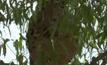 ต่อหัวเสือรุมต่อยในบ้านพักเสียชีวิต 1 คน