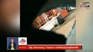 กลุ่ม Watchdog Thailand เอาผิดหนุ่มทุ่มสุนัขลงพื้น