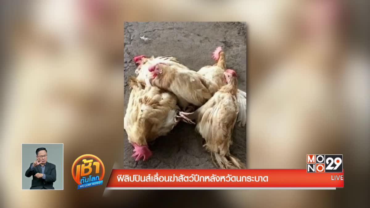 ฟิลิปปินส์เลื่อนฆ่าสัตว์ปีกหลังหวัดนกระบาด