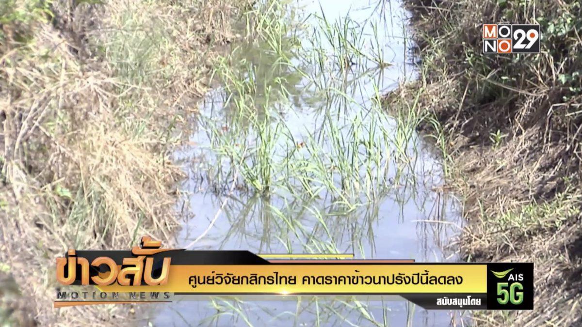 ศูนย์วิจัยกสิกรไทย คาดราคาข้าวนาปรังปีนี้ลดลง