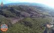 แผนปฏิบัติการฟื้นป่าภาครัฐ ที่คาดหวังให้ยั่งยืน