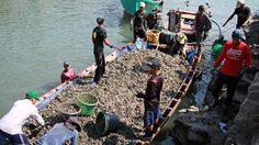 หอยเขมรทะลักเข้าไทยวันละ 5,000 กก.