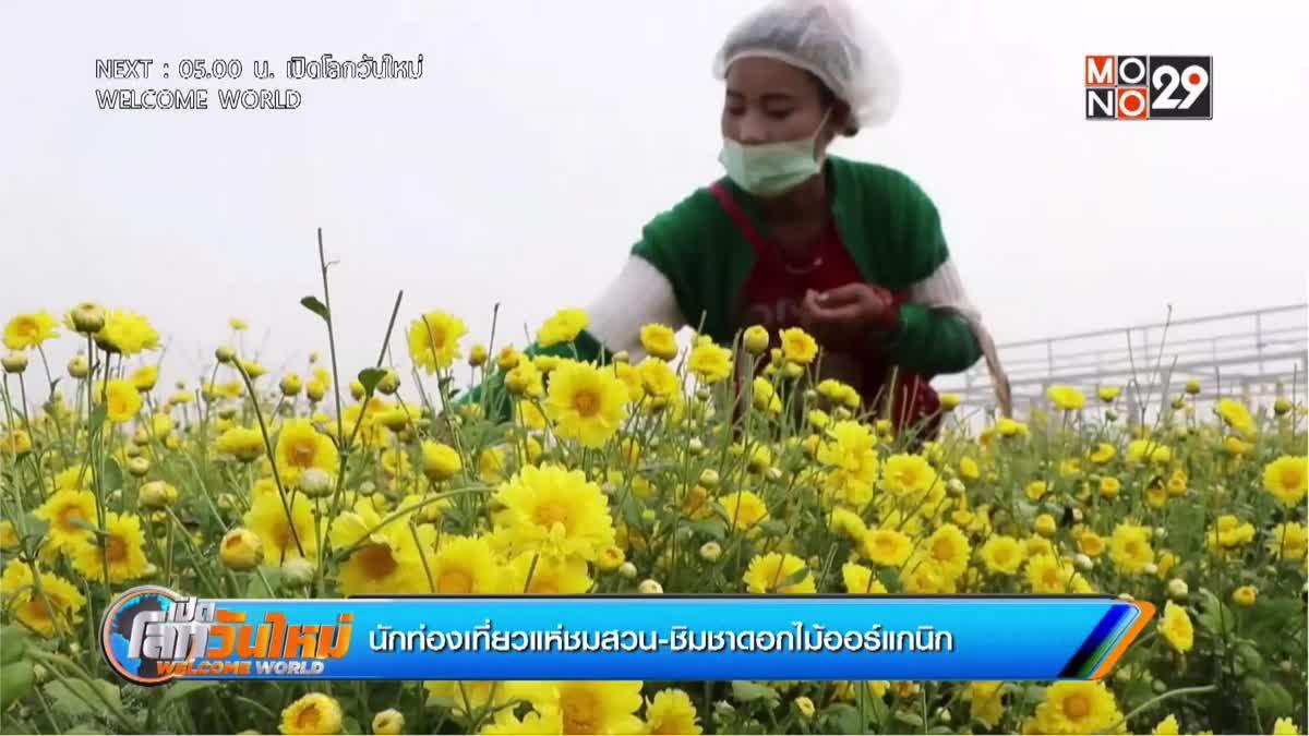 นักท่องเที่ยวแห่ชมสวน-ชิมชาดอกไม้ออร์แกนิก