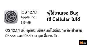 ผู้ใช้งาน iPhone บางส่วนเผย หลังอัพเดท iOS 12.1.1 เจอปัญหาเชื่อมต่อข้อมูลไม่ได้