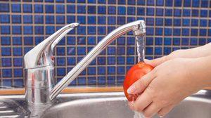 ชัวร์สุด! ล้างผักผลไม้ ด้วยน้ำไหลผ่าน 2 นาที ลดสารเคมีตกค้างได้ถึง 92 %