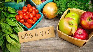 ลงทุนดูแลสุขภาพแบบคุ้มค่า ห่างไกลจากสารเคมี ด้วย อาหารออร์แกนิค