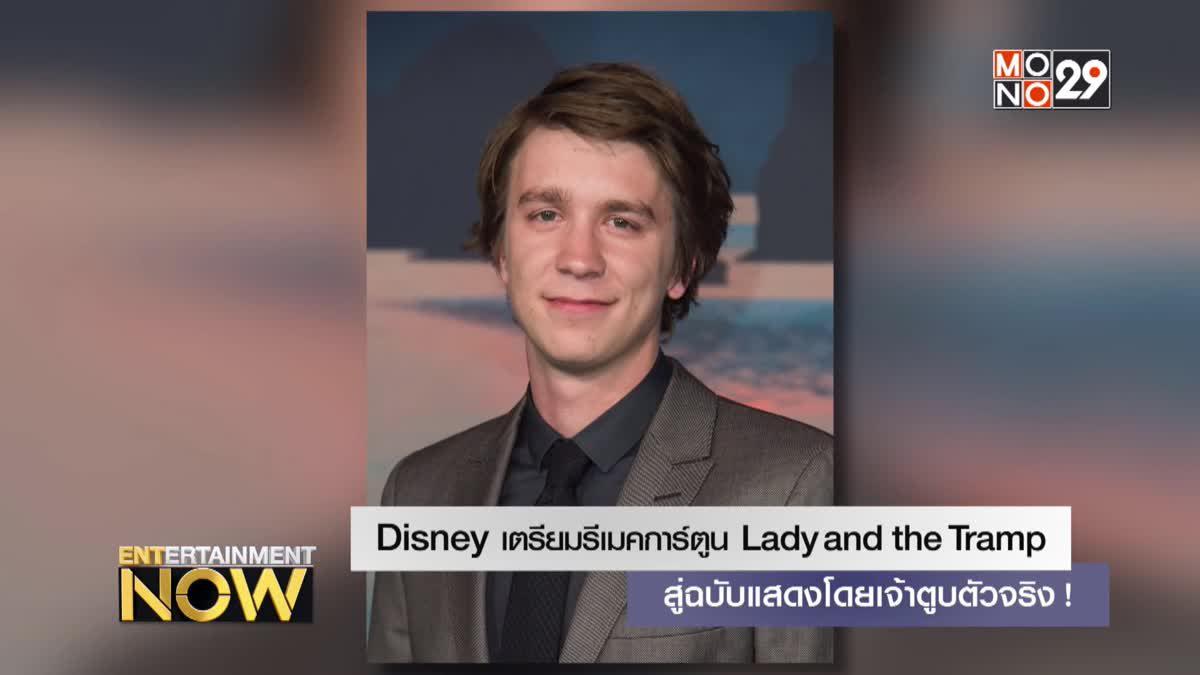 Disney เตรียมรีเมคการ์ตูน Lady and the Tramp สู่ฉบับแสดงโดยเจ้าตูบตัวจริง!