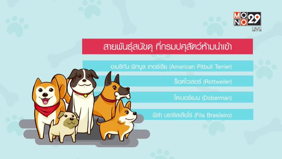 """คุยครบกับพบเอก : ปัญหา """"สุนัขของไทย"""" แก้ไขไม่ได้จริงหรือ?"""
