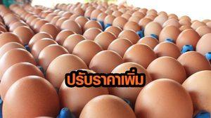 เกษตรกรปลื้ม ไข่ไก่ปรับขึ้นราคาอยู่ที่ 2.50 บาทต่อฟอง หลังแบบภาวะขาดทุนกว่า 1 ปี