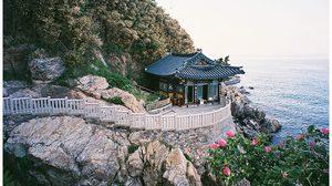 เที่ยวตามใจ ไหว้พระที่เกาหลี