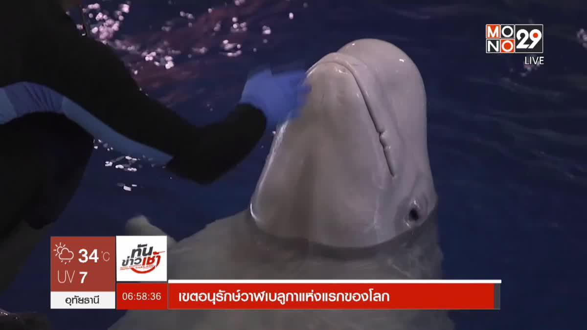 เขตอนุรักษ์วาฬเบลูกาแห่งแรกของโลก
