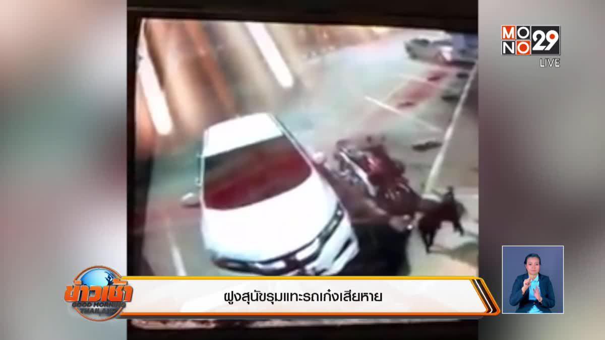 ฝูงสุนัขรุมแทะรถเก๋งเสียหาย