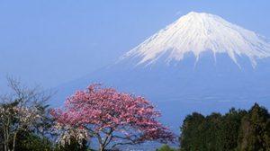 เที่ยวญี่ปุ่น เตรียมเสื้อผ้า อย่างไร?