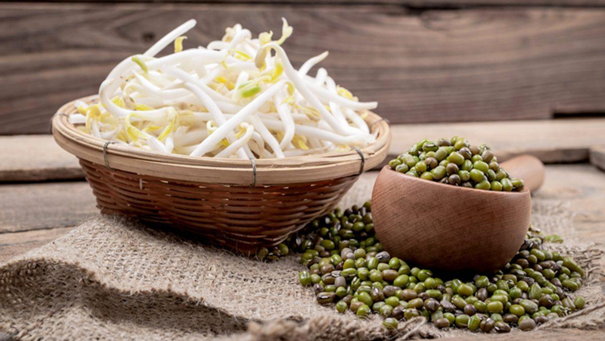 วิธีปลูกถั่วงอก ไว้กินเอง ในตะกร้า รสชาติหวานกรอบสะอาดปลอดภัย