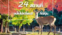 24 สถานที่ชมใบไม้เปลี่ยนสีที่ญี่ปุ่น ต้องไปเยือนสักครั้ง