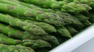 วิธีปลูกหน่อไม้ฝรั่ง พืชสร้างรายได้ดี สามารถปลูกกินเองได้
