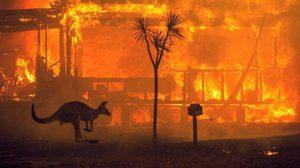 นายกฯ ออสเตรเลีย เผยคืบหน้าเหตุไฟป่า ฝนช่วยลดอุณหภูมิ แต่ยังต้องระวัง