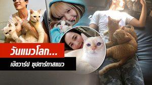 เพลินตา! วันแมวโลก ส่องคนบันเทิง วิถีทาสแมว