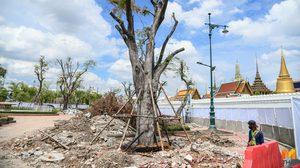 กทม.เริ่มก่อสร้าง โครงการอุโมงค์ทางเดินลอดถนนมหาราช-หน้าพระลาน