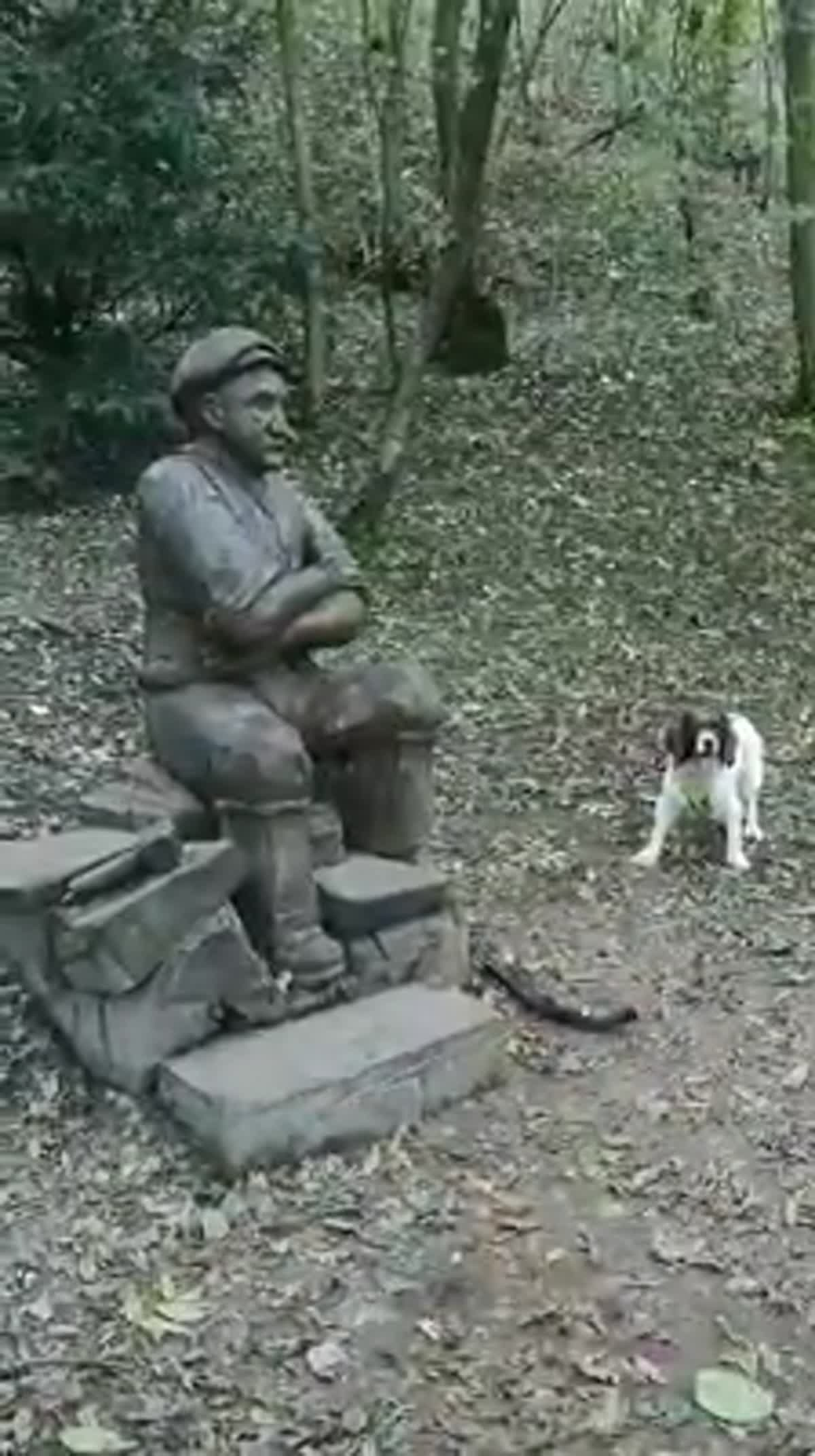 น้องหมาไร้เดียงสาคาบกิ่งไม้มาชวนให้รูปปั้นเล่นด้วย