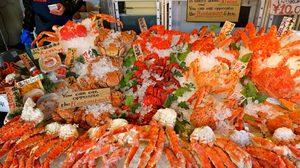 อาหารทะเลรสเด็ด ราคาหลักร้อย ต้อง ตลาดปลานิโจ ฮอกไกโด เท่านั้น!