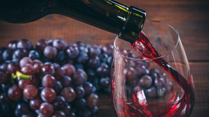 ผลวิจัยชี้! ดื่มไวน์แดง มีประโยชน์กว่าที่คิด ส่งผลดีต่อสุขภาพของลำไส้