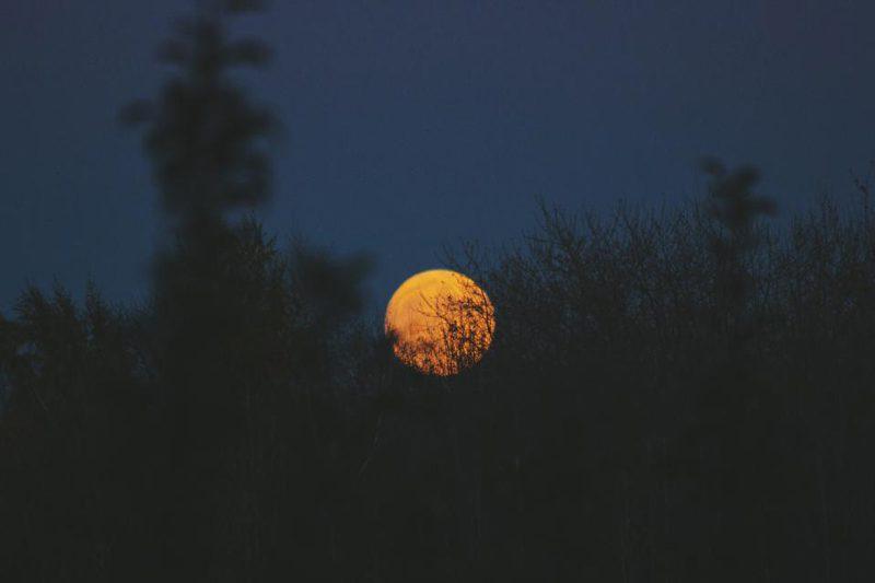 จะเกิดอะไรขึ้น ถ้าโลกนี้ไม่มีดวงจันทร์