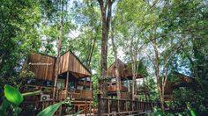 มาแรง! 10 ที่พักสไตล์บ้านไม้ โอบล้อมด้วยธรรมชาติ