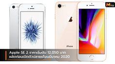 iPhone SE 2 เริ่มผลิตในเดือนมกราคม ก่อนเปิดตัวช่วงปลายเดือนมีนาคม 2020