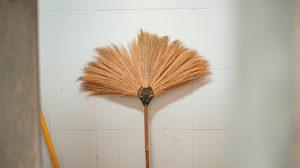 ง่ายแสนง่าย 3 ทริค ดูแลไม้กวาดดอกหญ้า ในบ้านให้ใช้งานได้อย่างยาวนาน