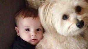 เมื่อเด็กน้อยกับสัตว์เลี้ยงอยู่ด้วยกัน ภาพที่ออกมาจึงเป็นแบบนี้