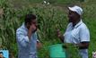 เทคโนโลยีการเกษตรใหม่ในเคนยา