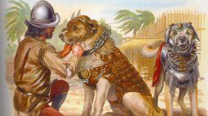 5 เรื่องจริงของสุนัขในประวัติศาสตร์ ที่ถูกใช้เป็นอาวุธสงคราม