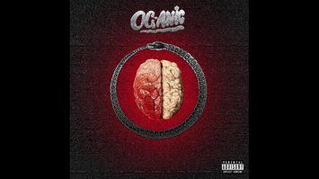 เนื้อเพลง ปวดหัว – OG-ANIC