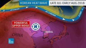 เกาหลีใต้ระส่ำ 'คลื่นความร้อน' เข้าขั้นวิกฤต ทำคนเสียชีวิตแล้ว 35 ราย