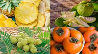 8 ผลไม้ที่ควรกินในหน้าหนาว ช่วยเสริมภูมิคุ้มกันให้ร่างกายแข็งแรง!!
