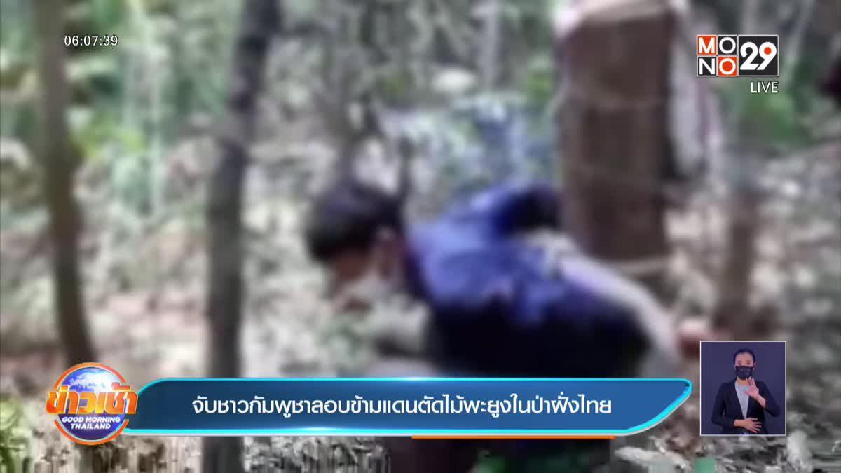 จับชาวกัมพูชาลอบข้ามแดนตัดไม้พะยูงในป่าฝั่งไทย
