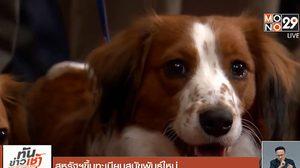 สหรัฐฯ ขึ้นทะเบียนสุนัขพันธุ์ใหม่