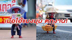 """""""ไม่มีงานไหนต่ำ…ถ้าทําด้วยใจสูง"""" เมื่อ ไอ้แมงมุม ไม่มีงาน ต้องมาอยู่เมืองไทย"""