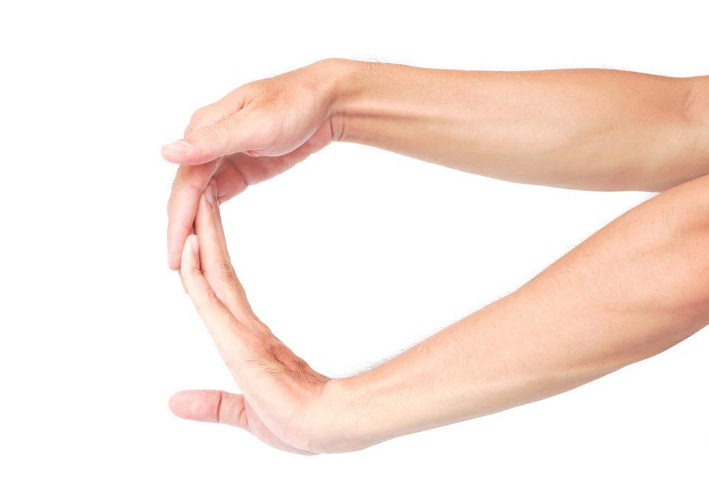 ข้อมือ