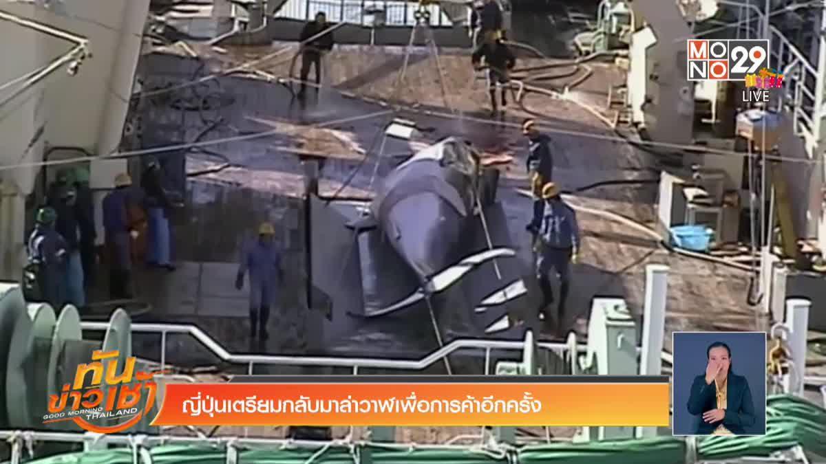 ญี่ปุ่นเตรียมกลับมาล่าวาฬเพื่อการค้าอีกครั้ง