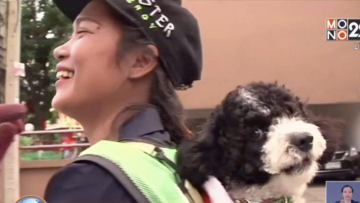 ดังทั่วโลก! สื่อนอกตีข่าว สาวไทยพาน้องหมาไปทำงาน